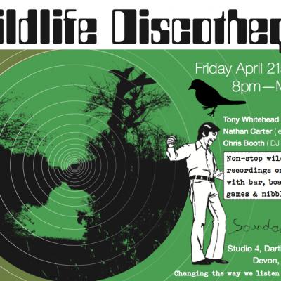 Partnership Projects - Wildlife Disco